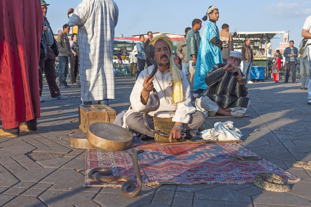 Marrakesh Celebrate Southern Africa